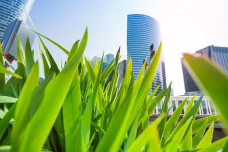 La Defense skyscrapers viewed through green grass Stock Photo