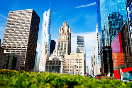 View of Chicago from city park through flowerbed Фото со стока