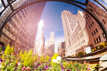 Flowers and green decorations on square in Chicago