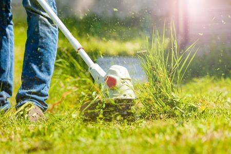 Hombre recortando hierba fresca con desbrozadora Foto de archivo