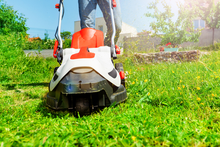 Man cutting grass using electric lawnmower in garden Stock fotó