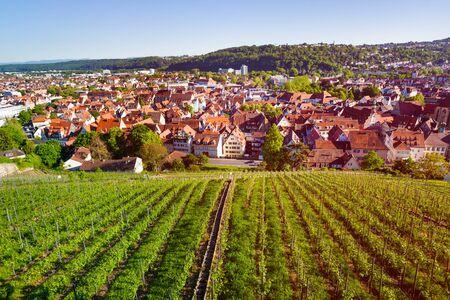 View of Esslingen with vineyards from Dicker Turm