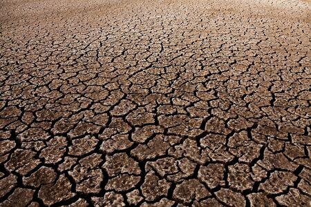 Fond de texture de terre de sol fissuré