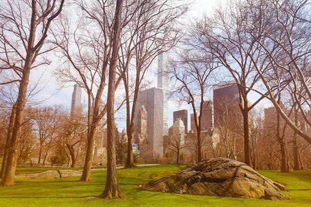 Central park untouched nature parts and NY skyline Stok Fotoğraf