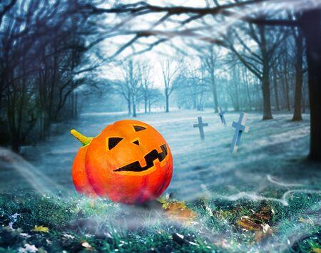 Halloween pumpkin in magic forest graveyard mist