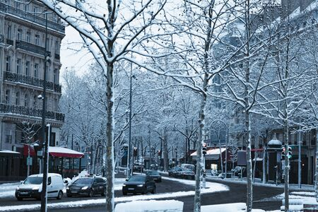Paris street, trees covered with snow during day