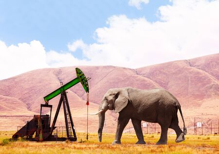 Concept of elephant and oil tower pump from ground