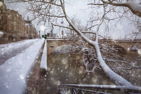 Snow covered trees on flooded Sein river in Paris