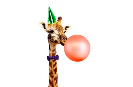 Giraffe blow air balloon isolated on white in birthday party cap