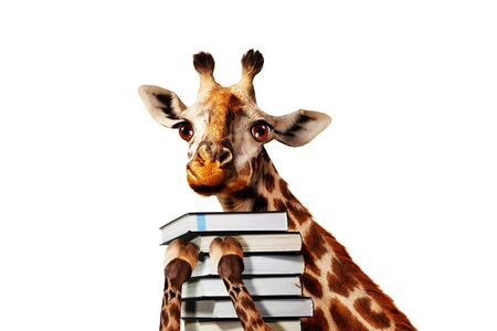 Happy giraffe with stack of books close view, mixed media illustration Foto de archivo - 137502744