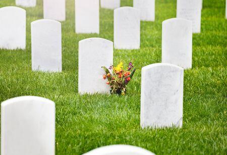 鲜花在军人公墓墓地的墓碑上,绿色的草地上有许多白色的坟墓