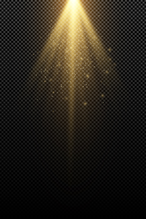 Stylish gold light effect isolated on a transparent background. Golden rays. Lamp beams. Flying golden magical dust. Sunlight. Vector illustration. EPS 10