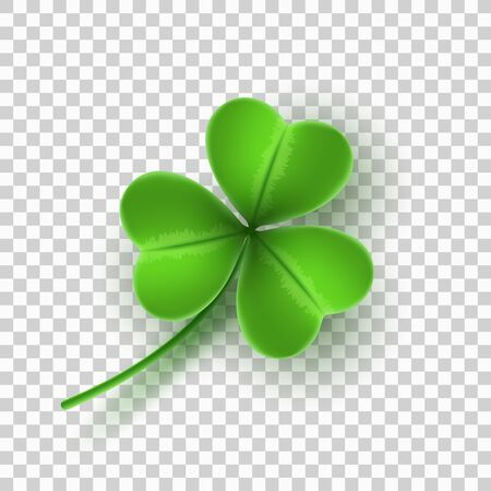 Realistic green clover isolated on transparent background. Element for Saint Patricks Day. Vector illustration.
