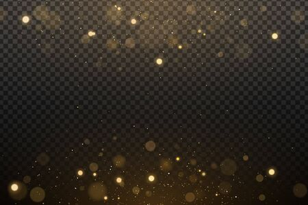 Lights effect bokeh on a dark transparent background. Golden glares with flying glowing magical dust. Vector illustration. EPS 10