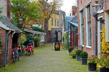 Autumn decoration of a street in Haarlem-Netherlands 2008