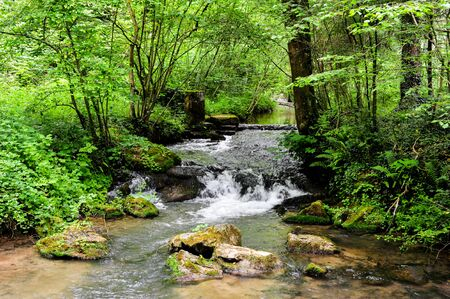 Nature scape van het wandelpad naast de stad Namen in Ardennen gebied van België Stockfoto