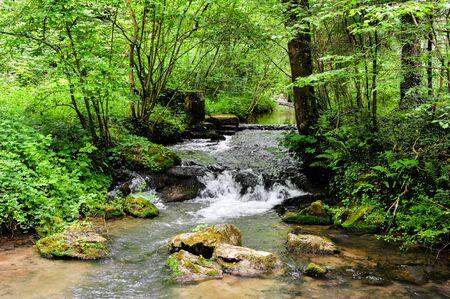 Nature scape van het wandelpad naast de stad Namen in Ardennen gebied van België Stockfoto - 62305129