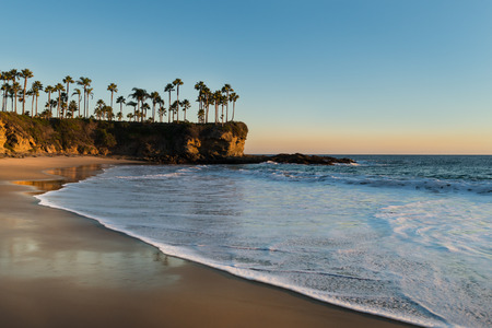 Shore with palm trees, rocks, blue sky and ocean in sunset time. Soft sunlight falling on beach. Beautiful landscape in Laguna Beach, California, USA. Stock Photo