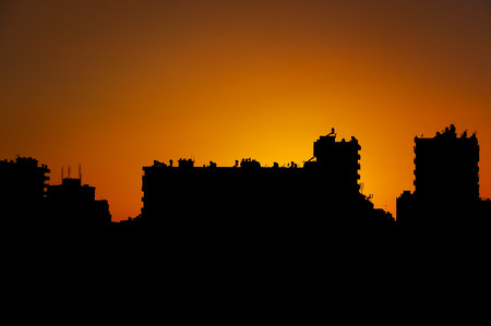 Silhouette of buldings and city view.