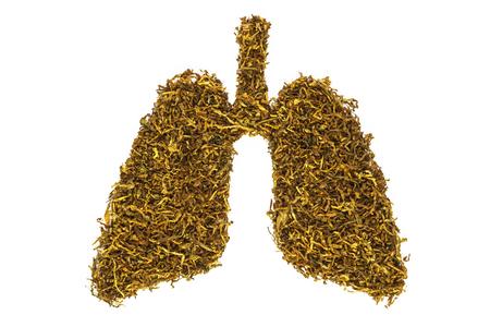 Konzeptbild von Tabak in Form einer menschlichen Lunge.
