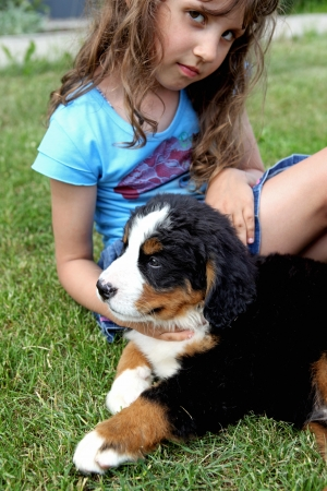bernese: a girl and dog Stock Photo