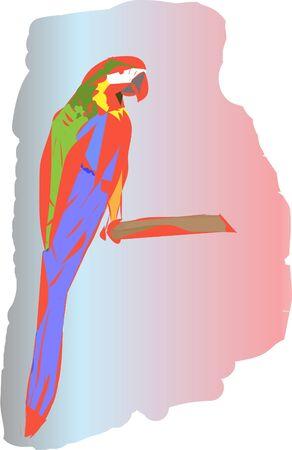 parrot Stock Vector - 17599509