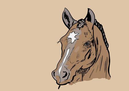 horse: caballo Vectores