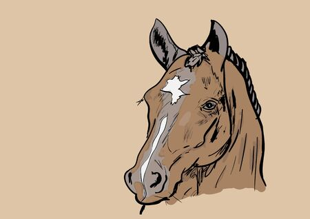 HORSE: horse