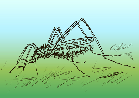 parasitic: komar