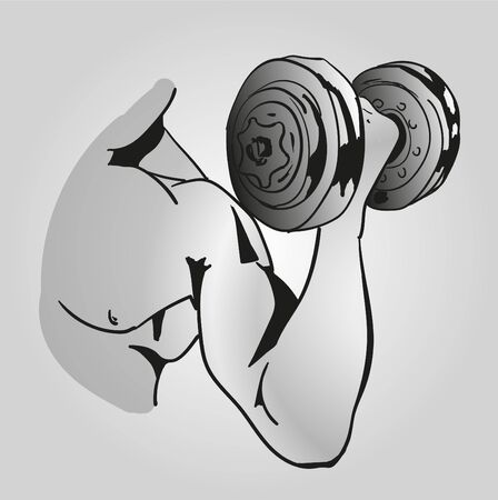 Biceps arm holding dumbell. Illustration