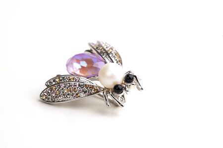 a brooch fly on the white