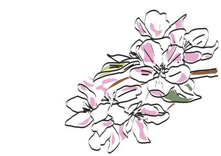 abstract floral background, flowers in the garden Illustration