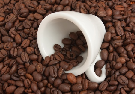 winnower: white cup in a pile of coffee beans Stock Photo