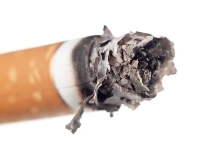 cigarette ashes macro isolated on white background