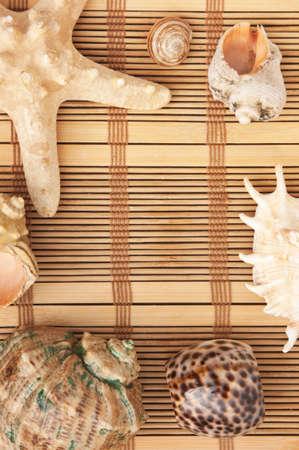 Photo frame of mats and sea shells photo