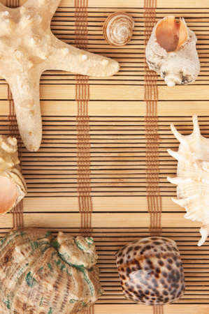 Photo frame of mats and sea shells photo