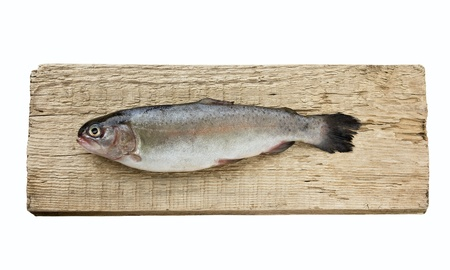 rainbow trout on wooden board isolated on white background photo