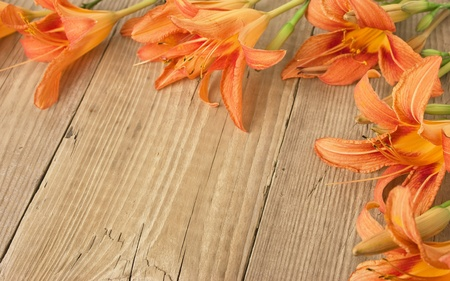 copyspaces: flowers on a wooden background Stock Photo