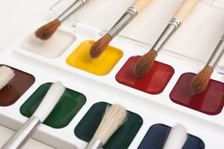 watercolor paints and  brushes isolated on a white  background photo