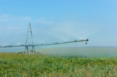 pivotal:  irrigation system watering  field  Stock Photo