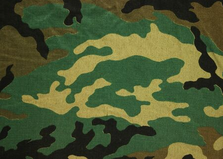 army background: Military texture camouflage background