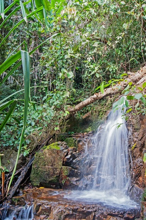 waterfall in the tropical jungles of South East Asia Stock Photo - 18090640