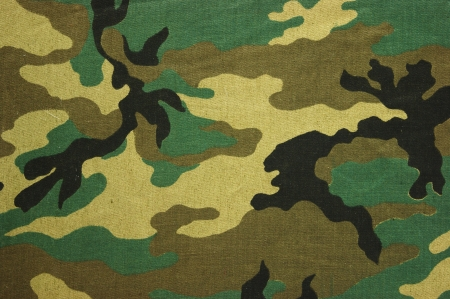 camouflage: Military texture camouflage background