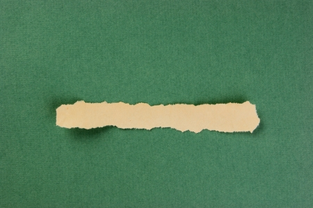 torn strips of newsprint on a green background photo