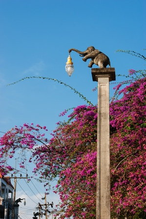 Street lamp in the form of an elephant in thailand photo