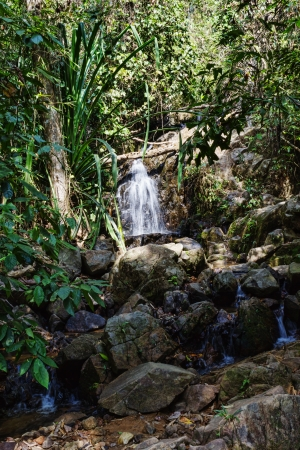 waterfall in the tropical jungles of South East Asia photo