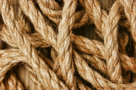bonding rope: background of the ropes