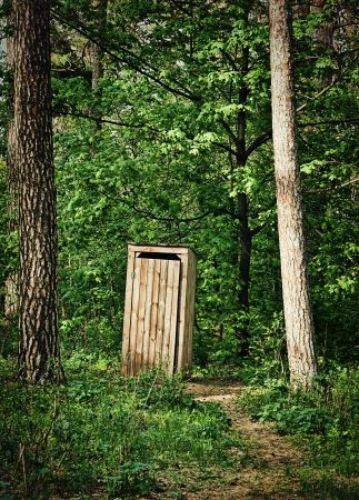 Old wooden water closet in the pine forest Stock Photo - 21420016