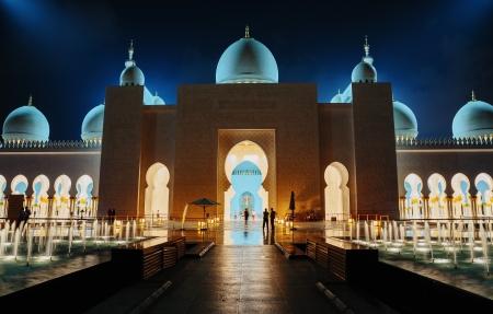 abu dhabi: ABU DHABI, UNITED ARAB EMIRATES - NOVEMBER 5: Sheikh Zayed Grand Mosque November 5, 2013 in Abu Dhabi, United Arab Emirates. The famous Sheikh Zayed mosque is the largest mosque in UAE