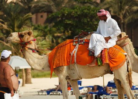DUBAI, UAE - NOVEMBER 16, 2012: Arab man and camel on Jumeirah Beach in Dubai at the Burj Al Arab background.  Dubai was the fastest developing city in the world between 2002 and 2008.